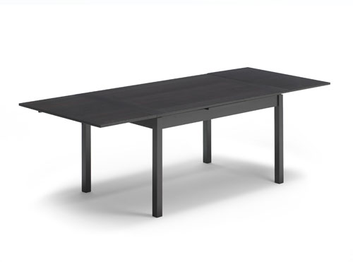 DINEX dining table.